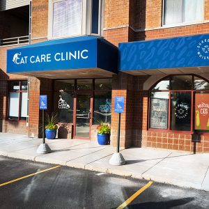 Cat Care Clinic Madison West Front of Building Entry