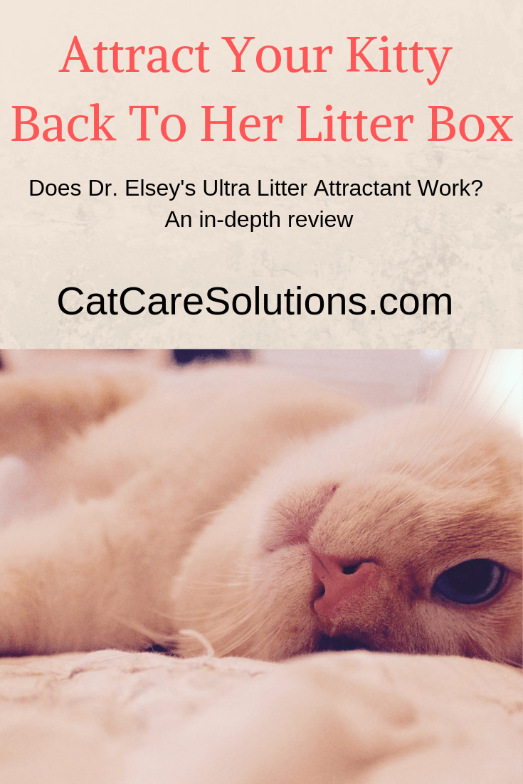 Ultra Litter Attractant Review 3