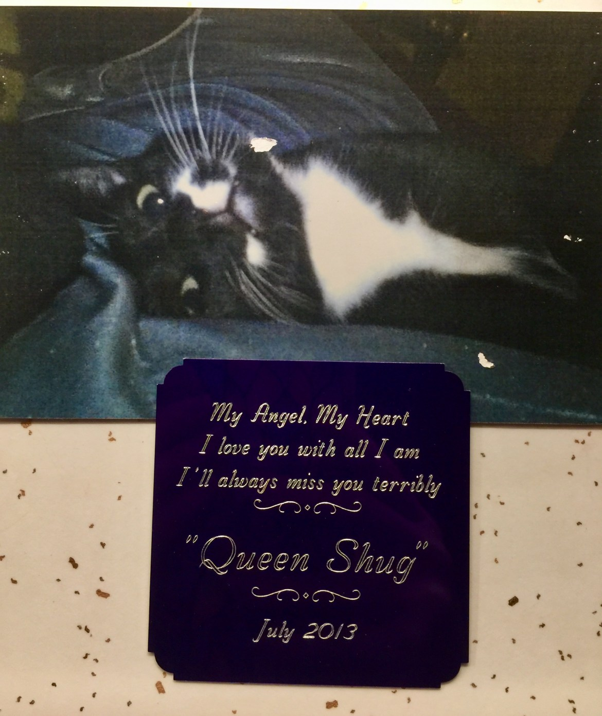 cat cremation plaque