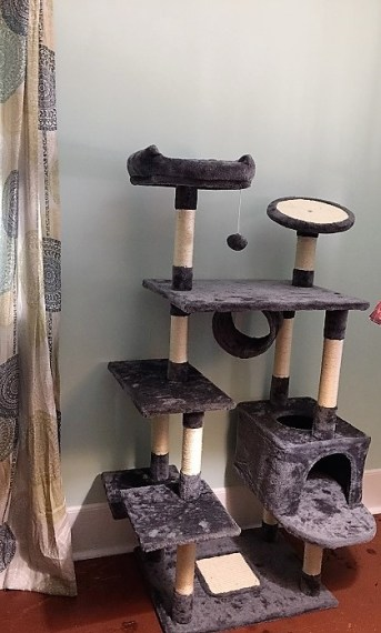 Yaheetech Cat Tree Review - From A Cat & Her Human 6