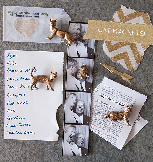 diy cat magnets