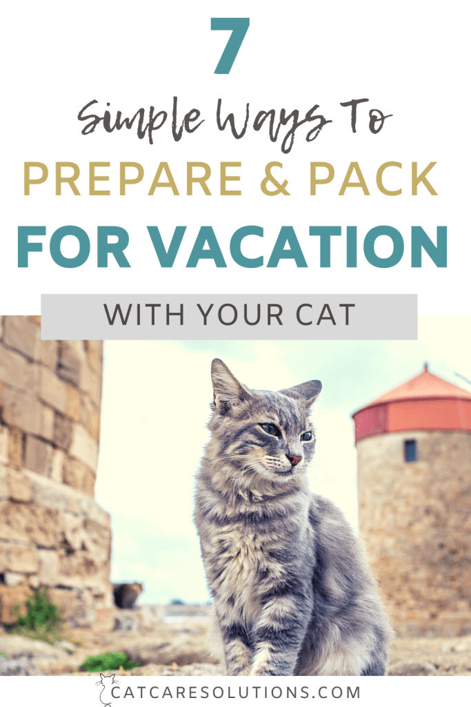 cats on vacation pin