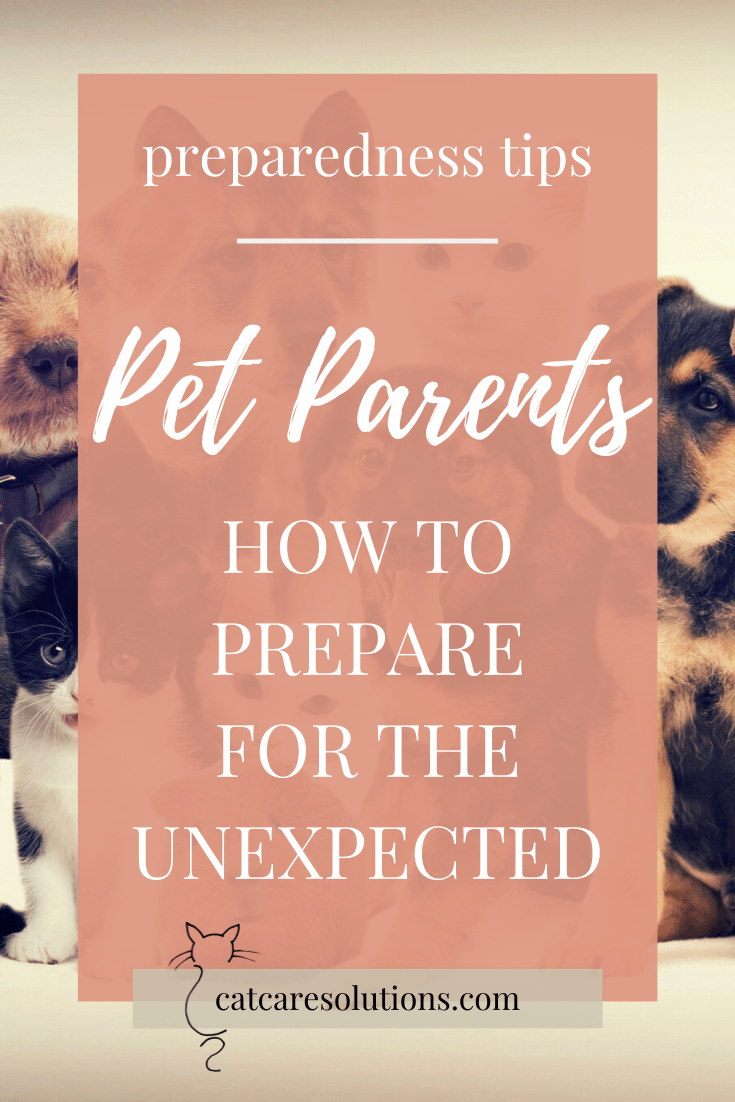 How to prepare for the unexpected as a pet parent