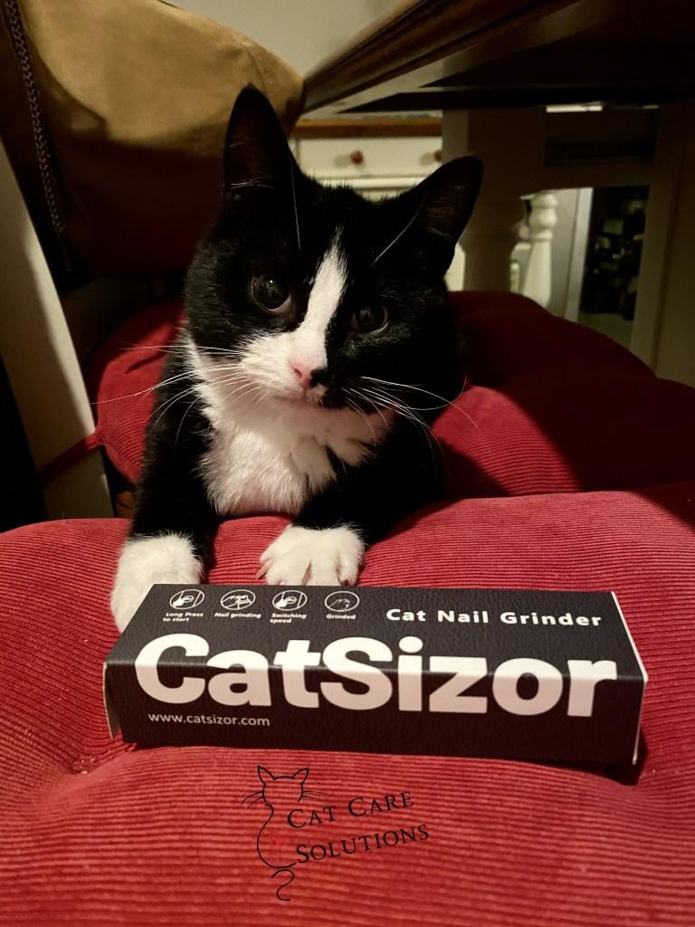 catsizor review