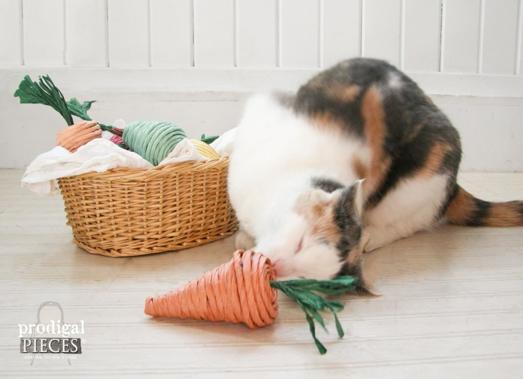 homemade cat toys fruits and vegetables