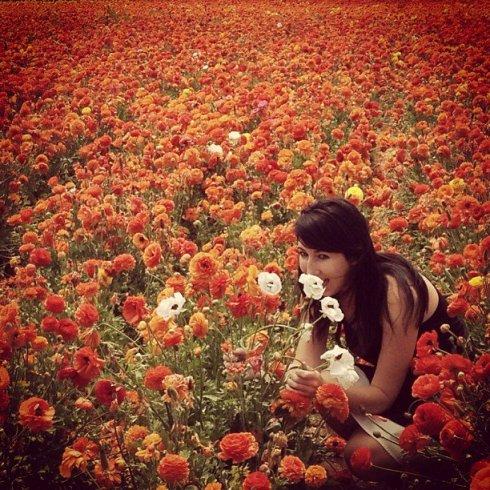 bethy flower