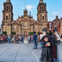 Thania Peck Catcher in the Style Mexico City