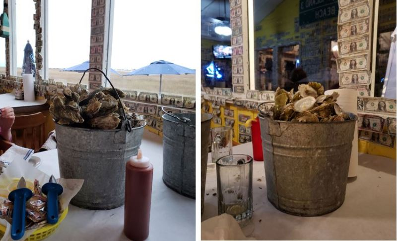 buckets of oysters