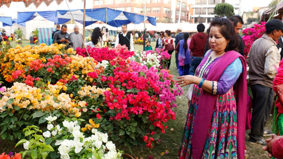 11th Godavari Flower Exhibition 2017