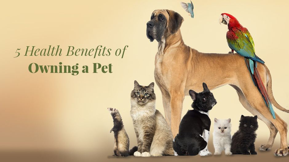 5 Health Benefits of Owning a Pet