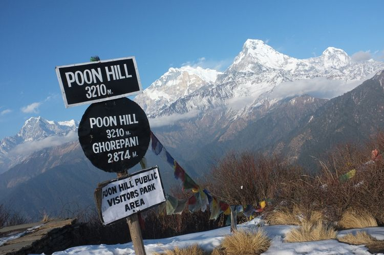 Poon Hill. Image Source: Mosaic Adventure