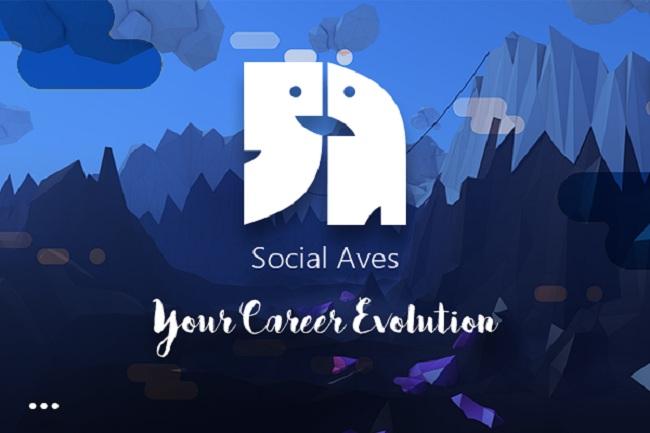 Social Aves. Image Source: Social Aves
