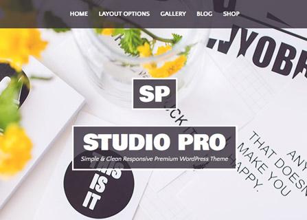 Studio Pro WordPress Theme Screenshot