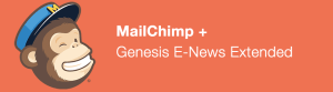 How To Configure genesis enews extended widget with mailchimp6