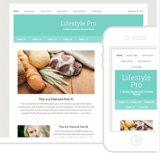 LifeStyle Pro Theme - Best Genesis Child Themes
