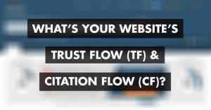 trust flow and citation flow FI