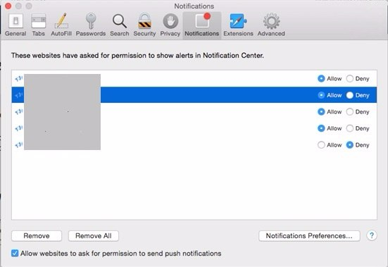 Guide To Disable Push Notifications on Safari Browsers