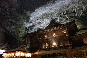 小雪がちらつく夜の氣生根の宮