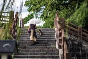 「そうだ、京都行こう」そんなあなたのための十石舟でGo