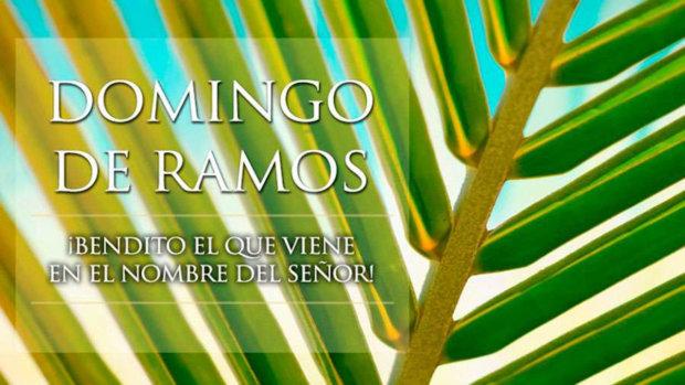 Domingo de Ramos Cuaresma (A)