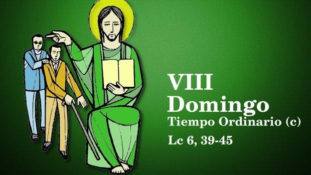 VIII Domingo del Tiempo Ordinario (c)