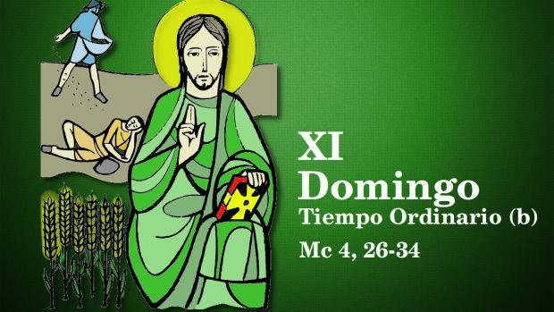 XI Domingo del Tiempo Ordinario (B)
