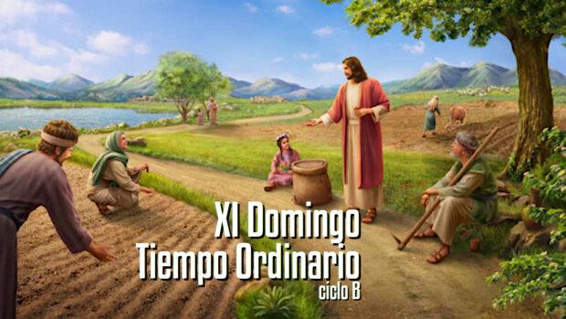 XI Domingo del Tiempo Ordinario B