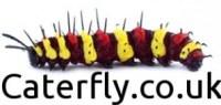 Caterfly Logo Url 313x148