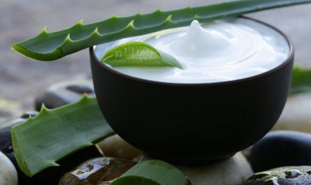 Aloe Vera proprietà benefici 3 ricette