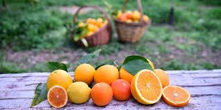 arance proprietà copertina