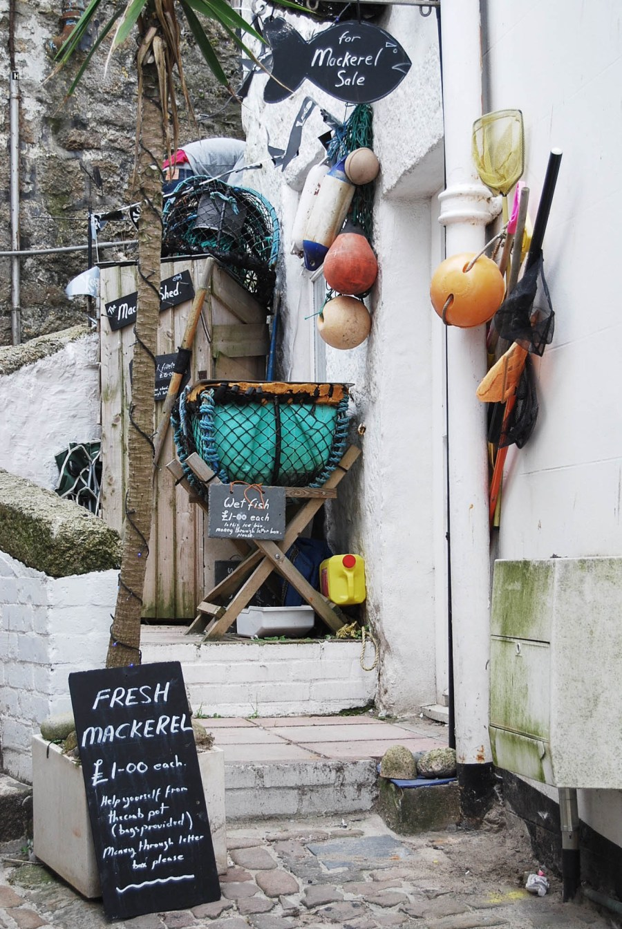 catesthill-st-ives-4