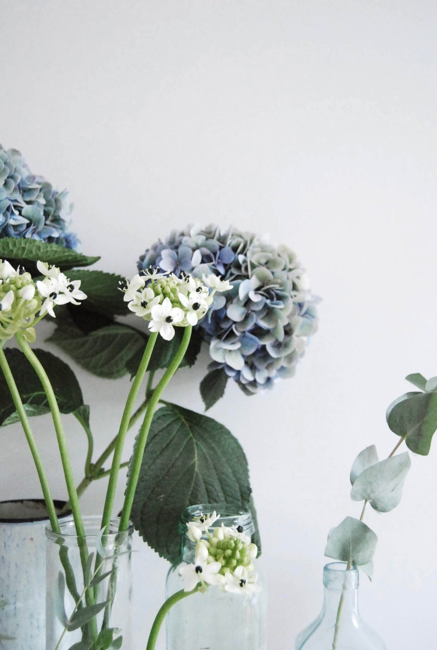 urban-jungle-bloggers-plants-flowers-31