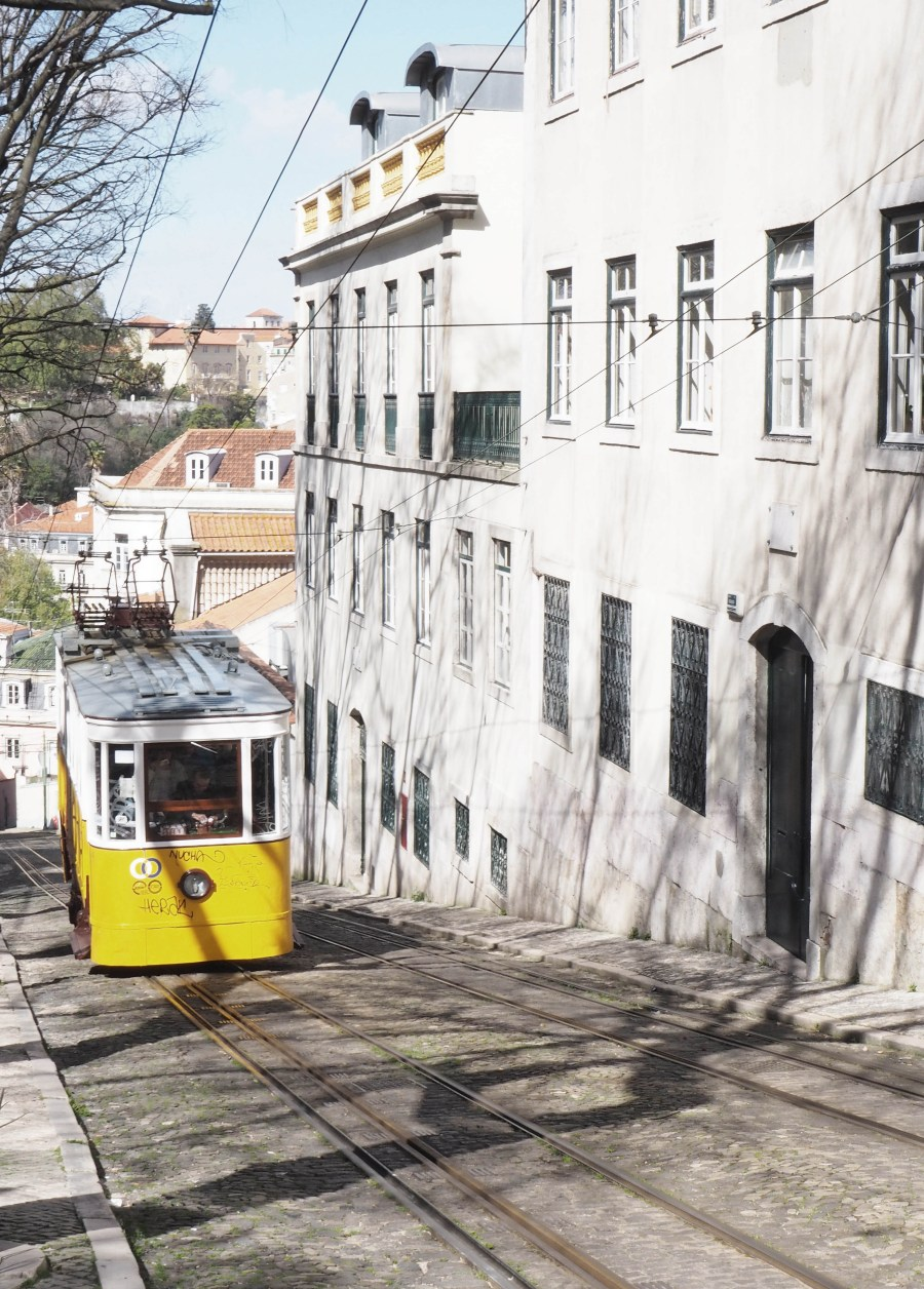 catesthill - Lisbon travel guide