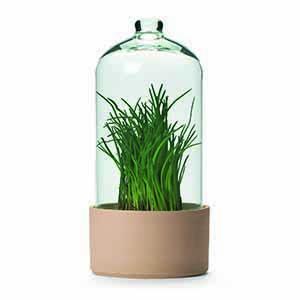 Manufactum Herbal Greenhouse - 76296