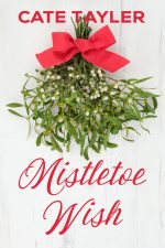 Mistletoe Wish Cover Contemporary Holiday Romance