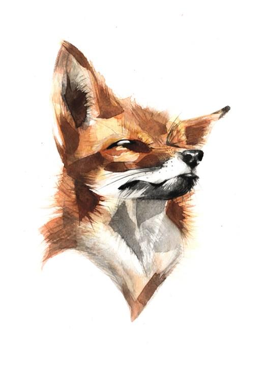 Foxy72