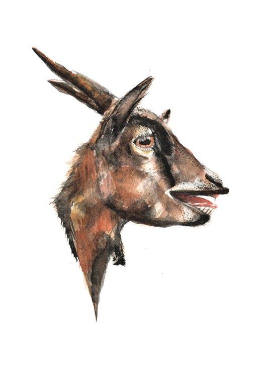 Goat_Goo