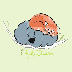 redpandakoala---Sleeping