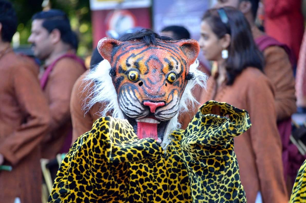 DSC_1500_v1 india day fair India Day Fair DSC 1500 v1