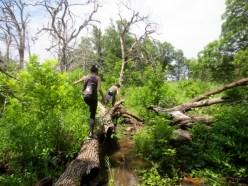 Wichita Mountains Wildlife Refuge, OK | Photo: Dixie Nambo