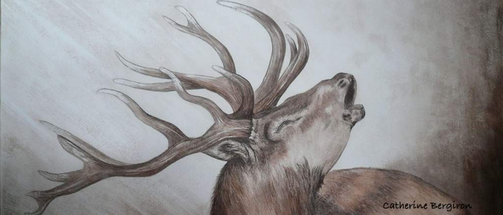tableau sur mesure le cerf brame peinture sur bois