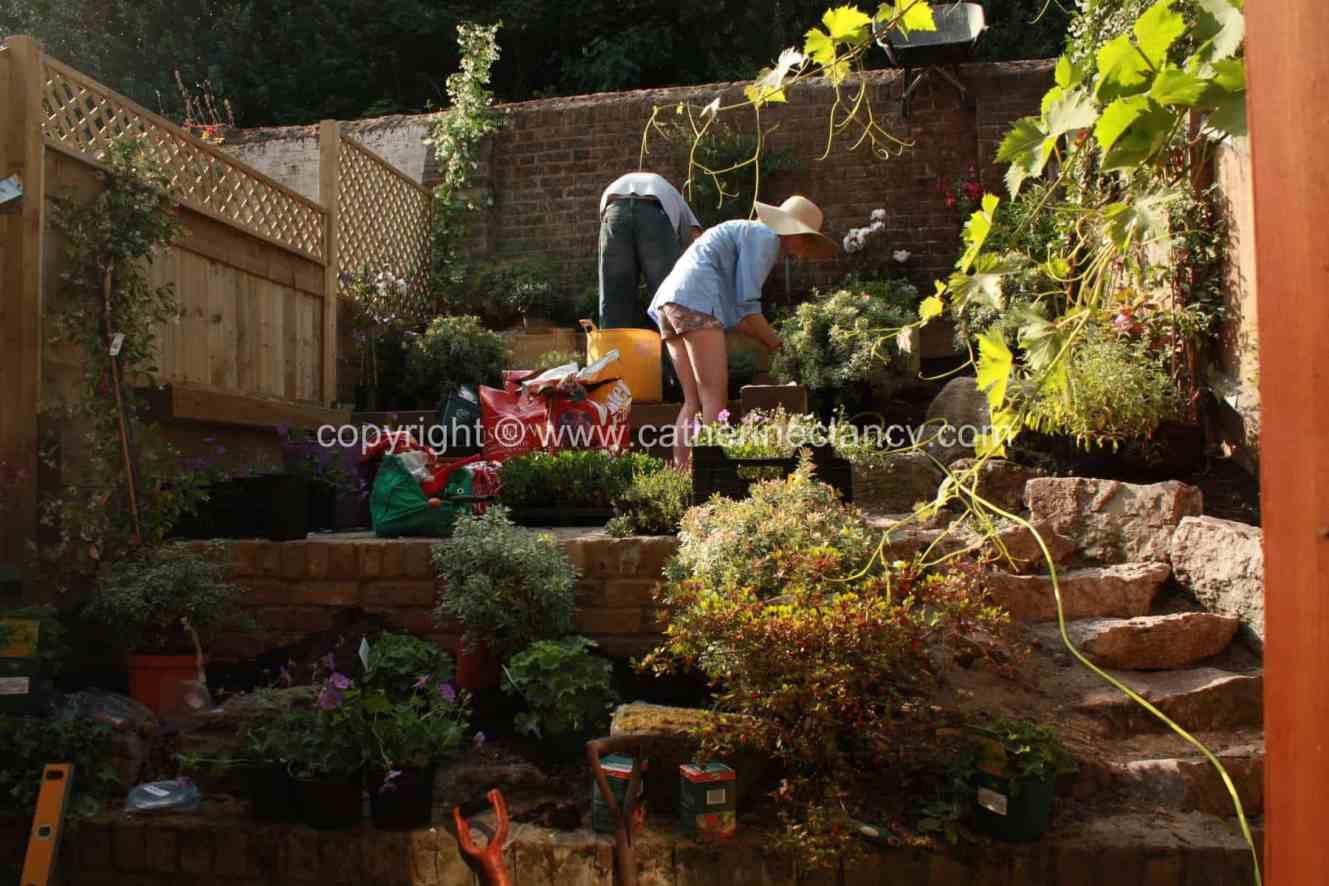 greenwich-terraced-garden-6