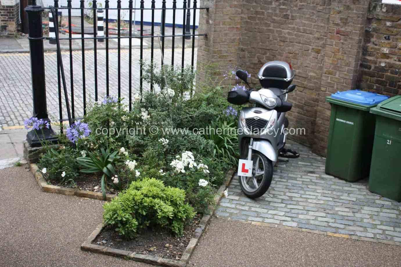london-courtyard-front-garden-5