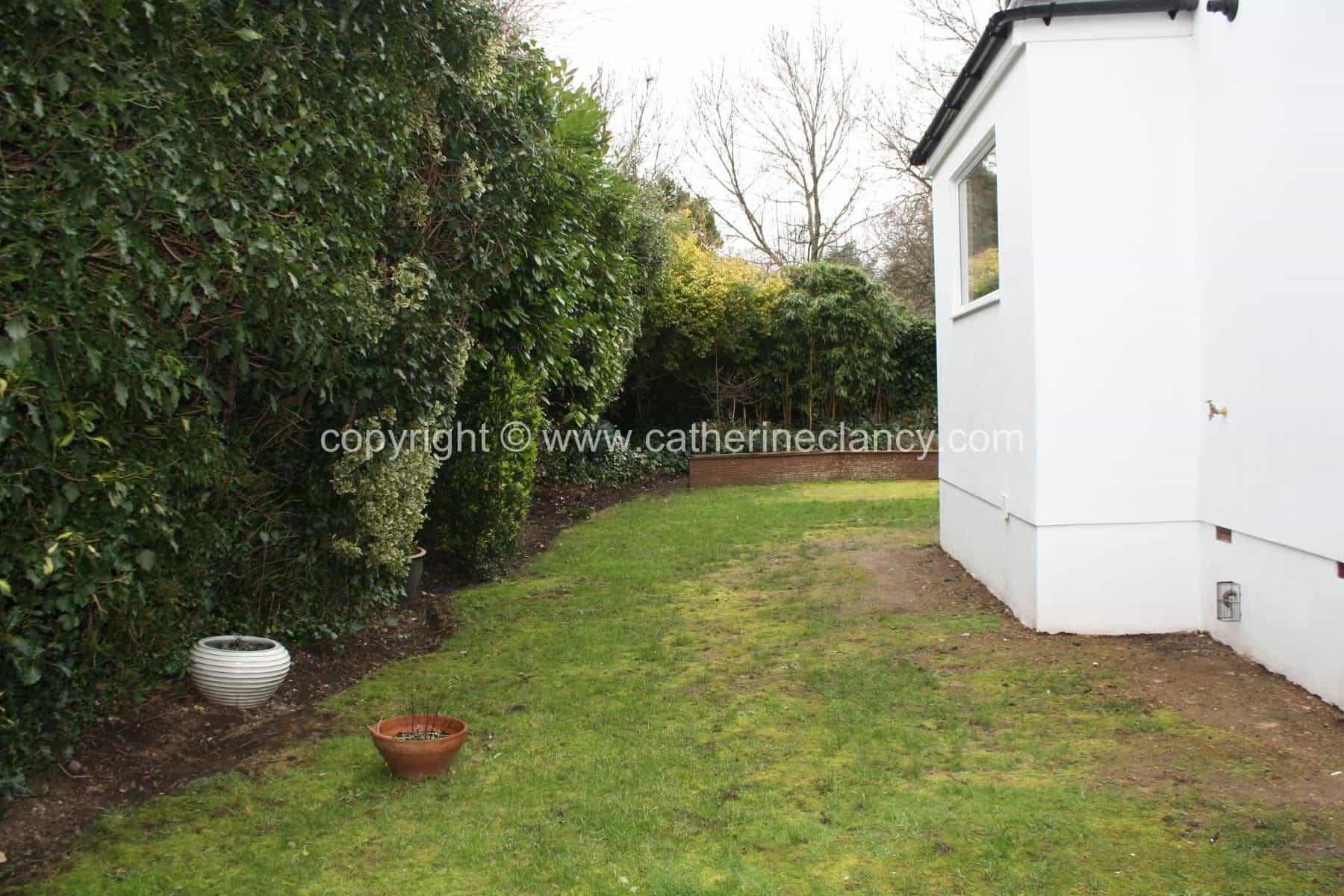 blackheath-deck-garden-14