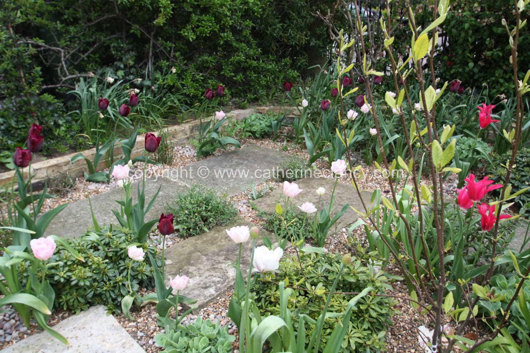 west-greenwich-gravel-garden-10