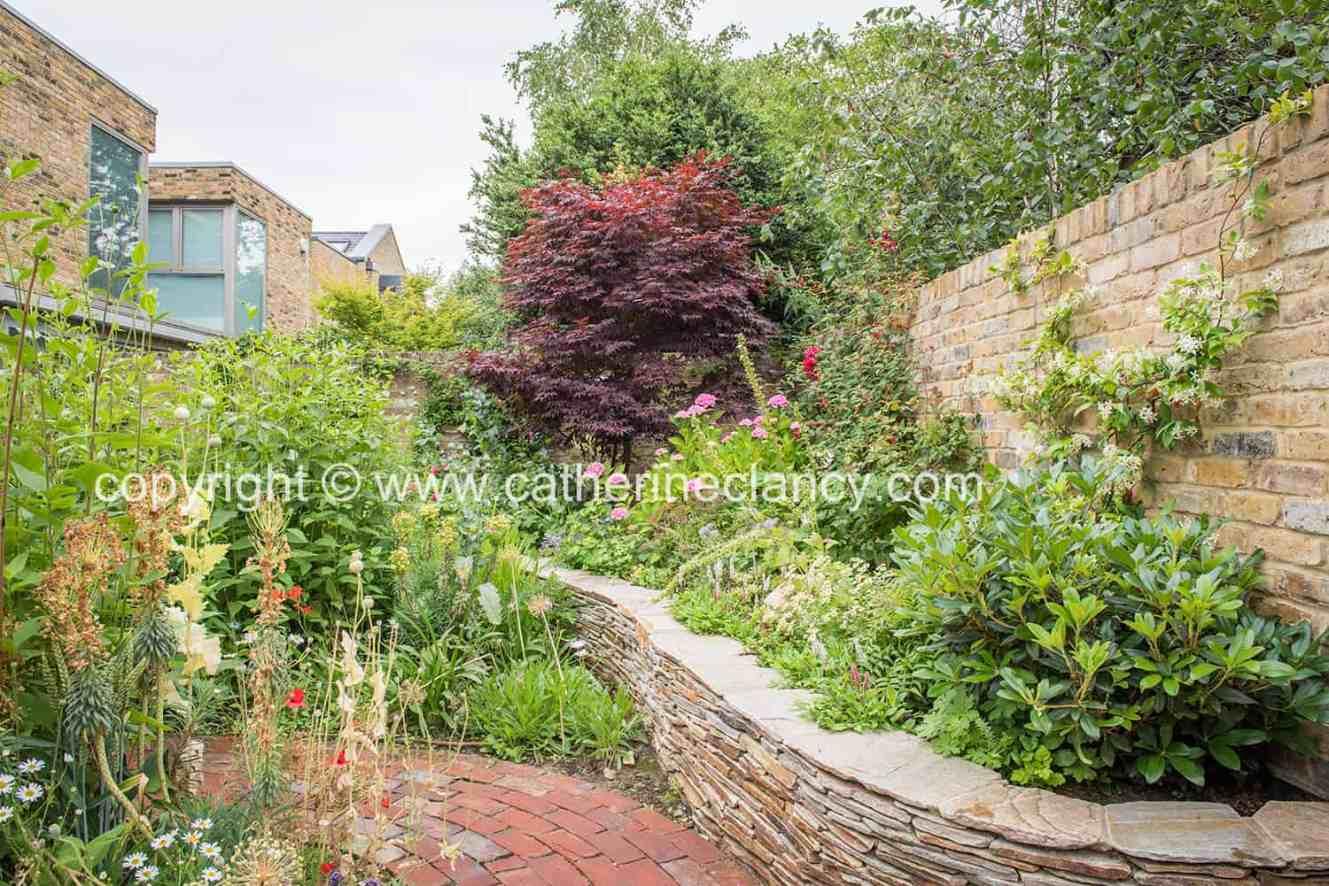 blackheath natural flower garden (19)
