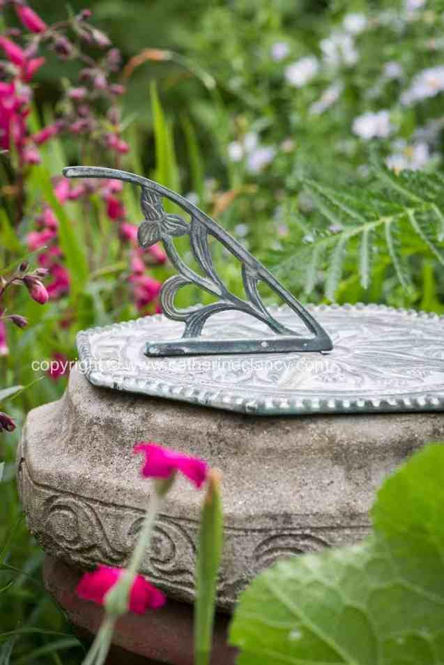 blackheath natural flower garden (35)