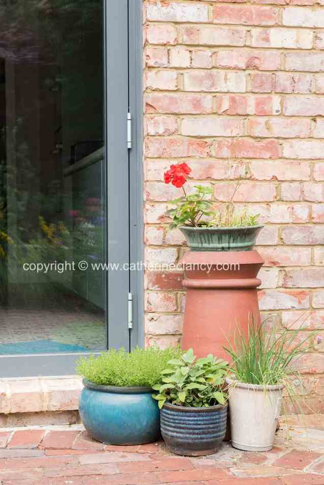 blackheath natural flower garden (41)