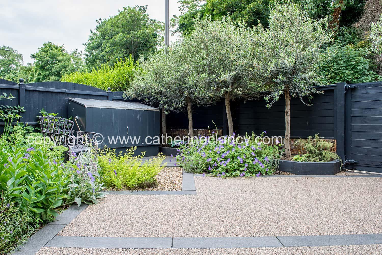 contemporary blackheath front garden 3
