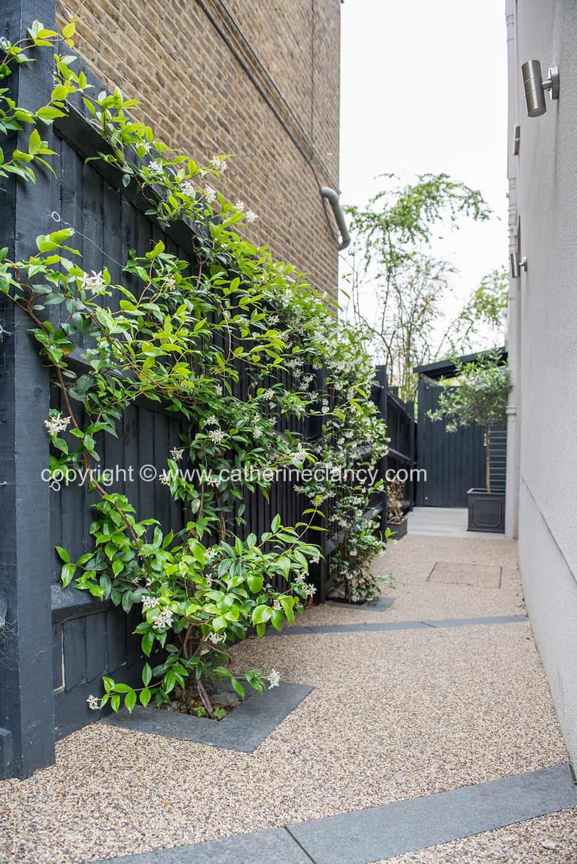 contemporary blackheath front garden 4